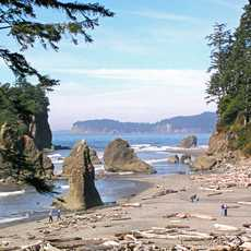 Ruby Beach auf der Olympic Peninsula