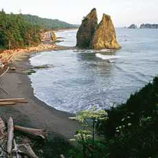 Rialto Beach im Olympic National Park