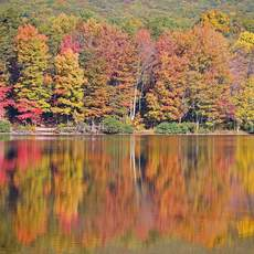 Indian Summer im Rocky Gap State Park