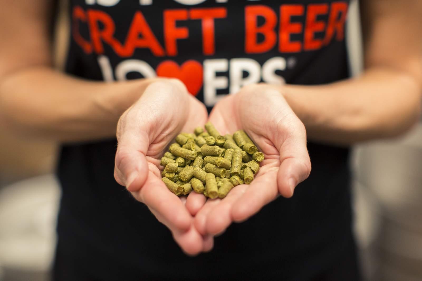 Craft Beer in Virginia