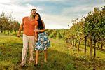 Spazieren durch die Weinreben, Loudoun County
