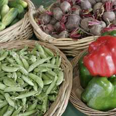 Lokales frisches Gemüse
