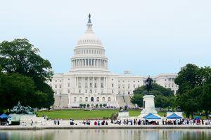 Städtereisen USA: Das Capitol - Washington D.C.