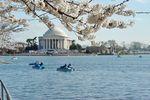Städtereisen USA: Washington D.C. - Jefferson Memorial