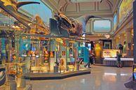 Städtereisen USA: Washington D.C. - Natural History Museum Sant Ocean Hall