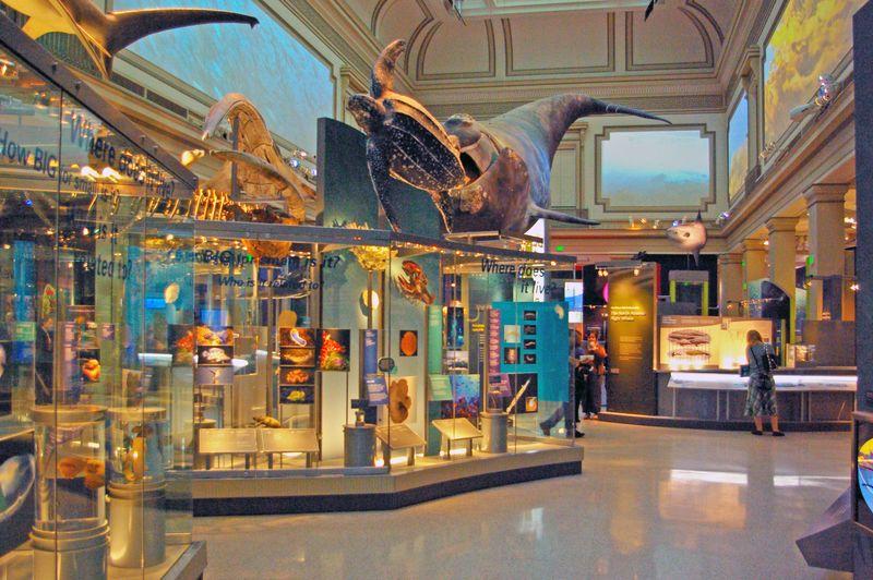 Foyer Museum Usa : Washington d c individuelle reise in die usa hauptstadt