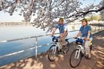 Fahrradmiete in Washington D.C. (1 Tag)