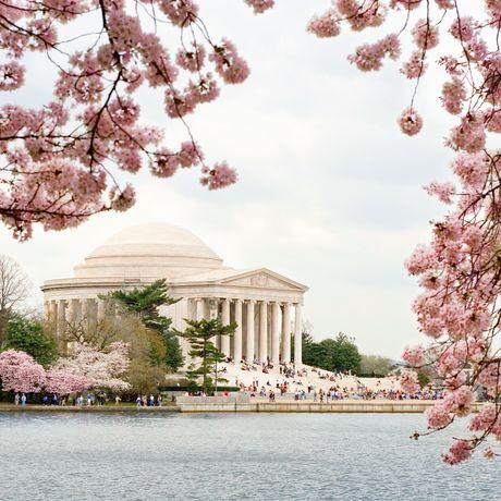 Jefferson Monument in Washington D.C.