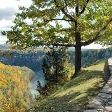 Herbst bei den Finger Lakes