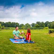 Zwei Personen beim Picknick im Finger Lakes Weinanbaugebiet im Bundesstaat New York