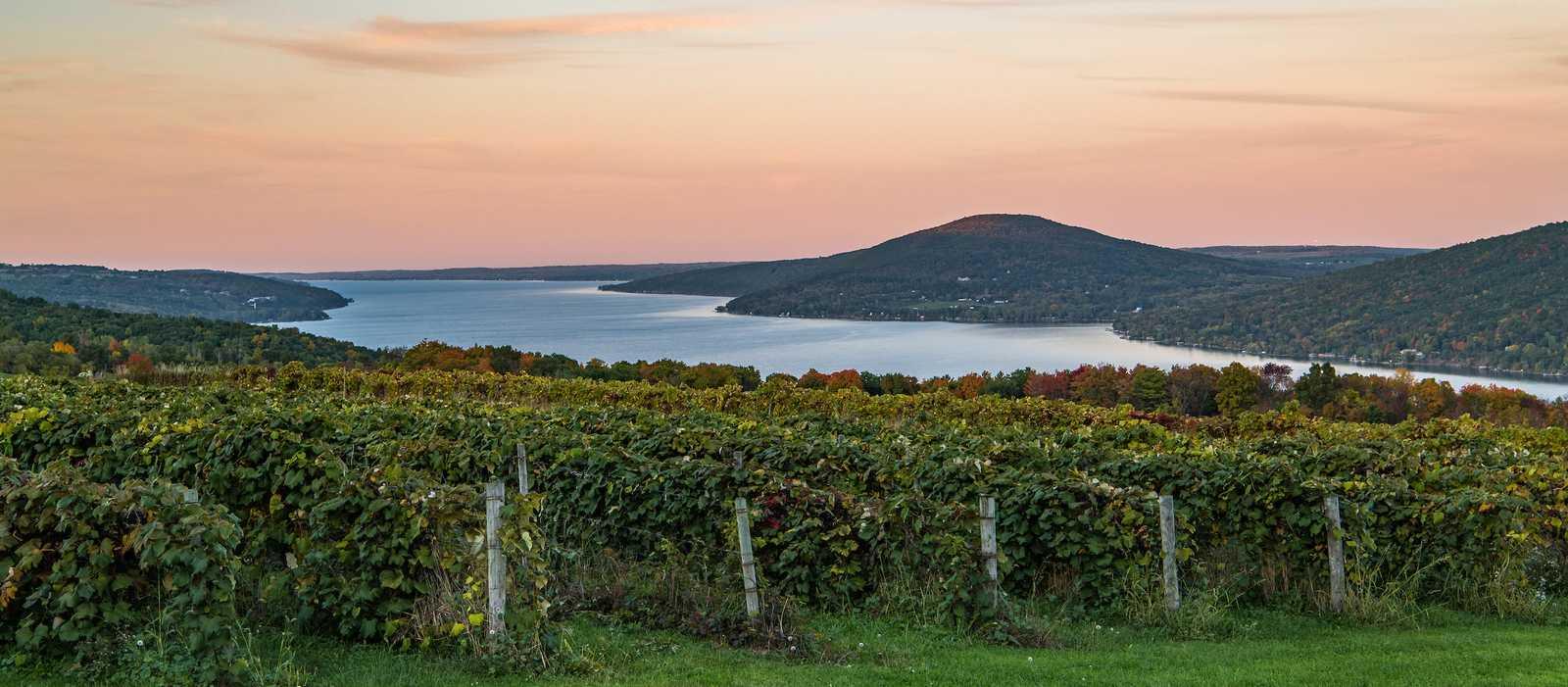 Blick auf den Canandaigua Lake und Weinberge in Naples im US-Bundesstaat New York