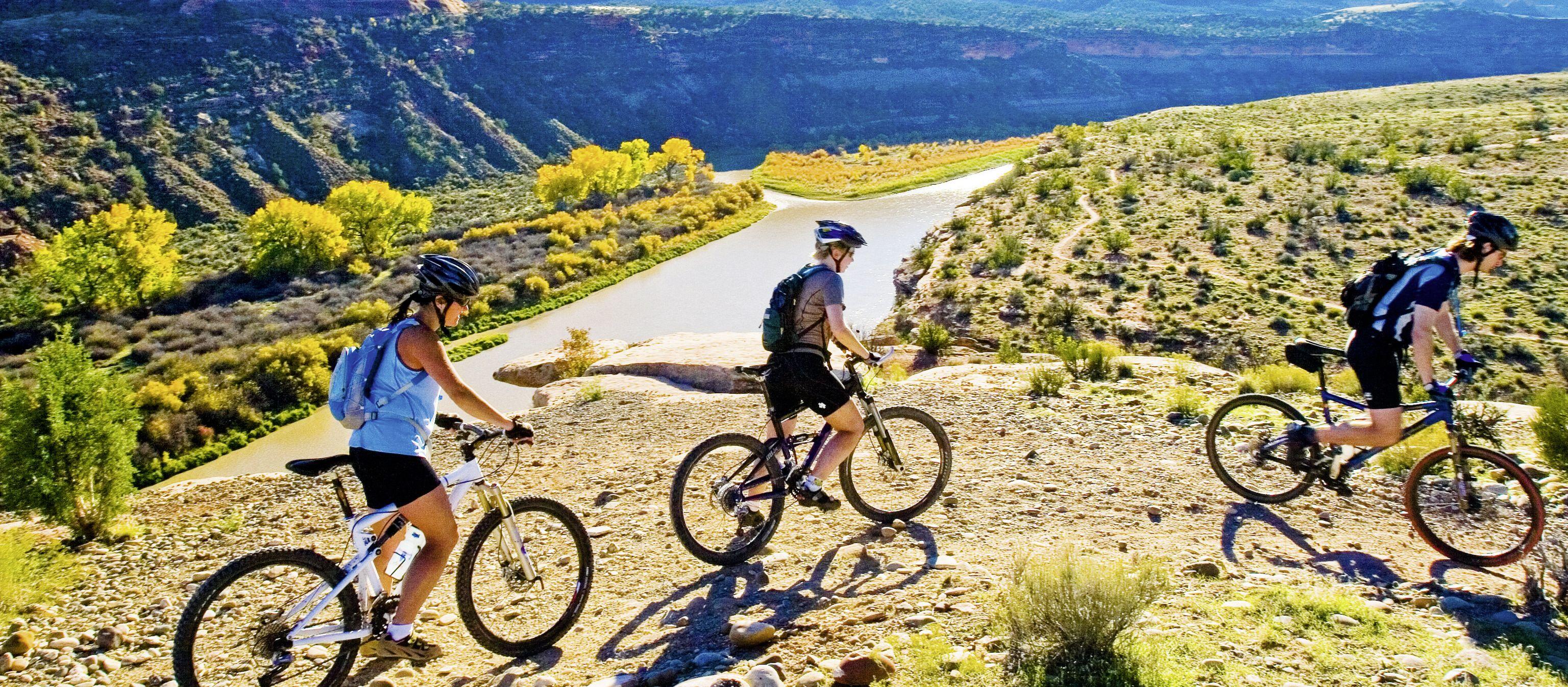 Mountainbiker in der Naehe von Fruita