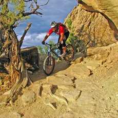 Mountainbiking in Colorado