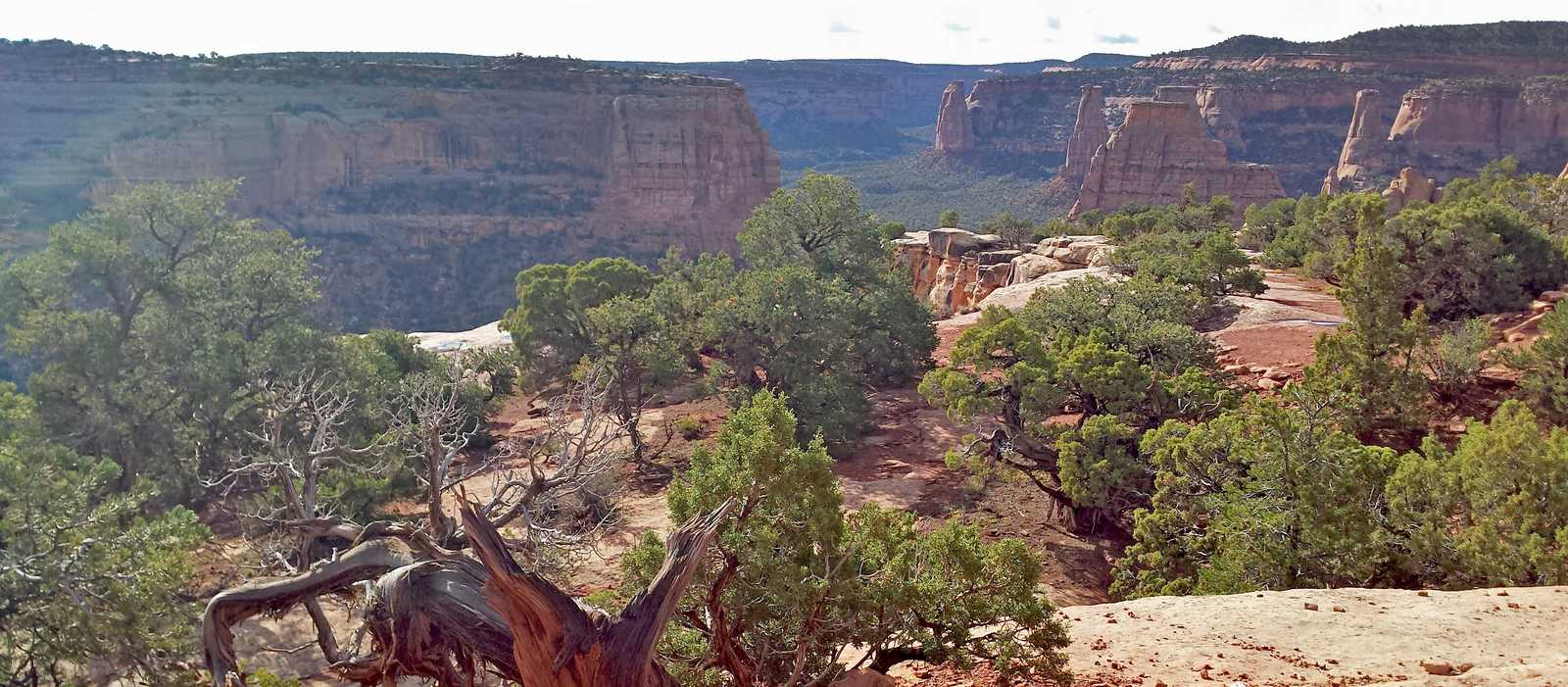 Das Colorado National Monument