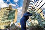 öffentliche moderene Kunst - der Big Blue Bear in Denver