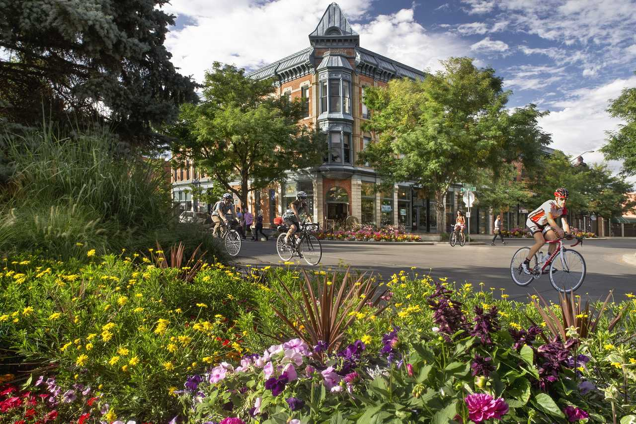 Fort collins über 50 datiert