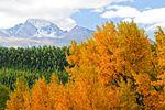 Rocky Mountain National Park im Herbst im schönen Colorado