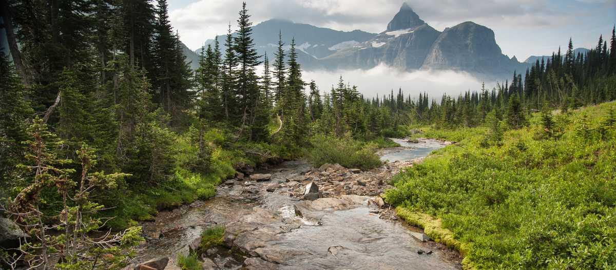 Thunderbird Mountain im Glacier National Park, Monatana