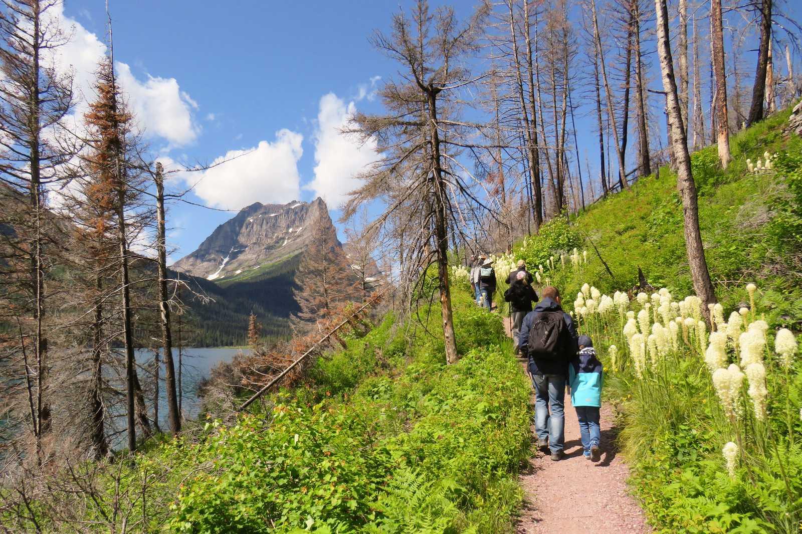 Wandern im Glacier-Nationalpark in Montana