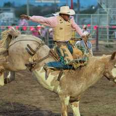 Last Chance Stampede and Fair in Helena, Montana