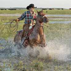 Impressionen der Black Leg Ranche in Sterling, North Dakota