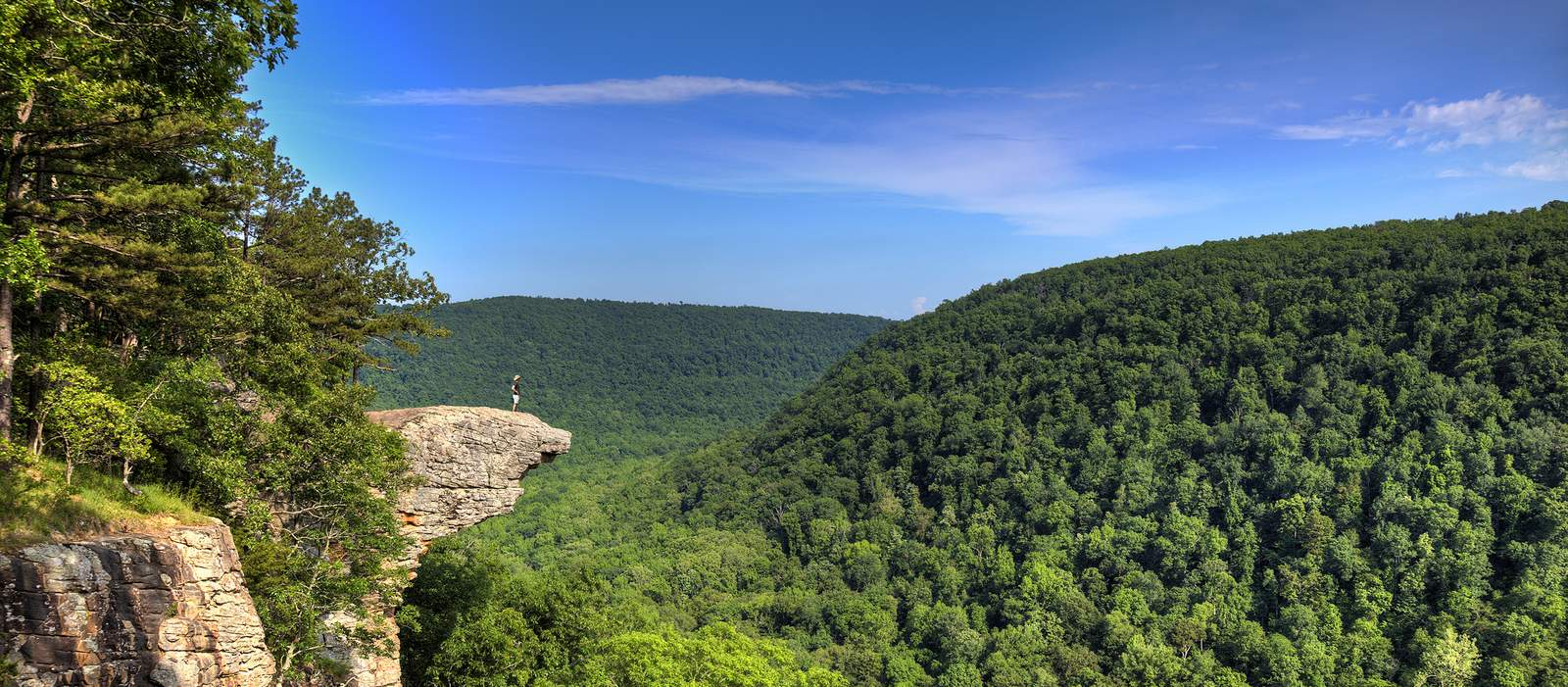 Person am Whitaker Point