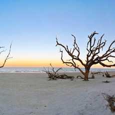 Draftwood Beach
