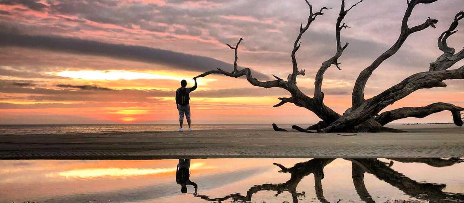 Mann mit Baum am Driftwood Beach auf Jekyll Island, Georgia