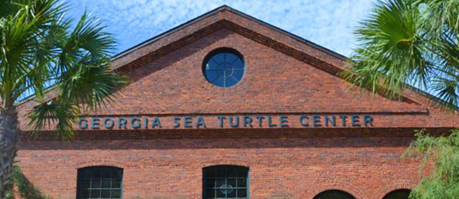 Schildkröten-Krankenhaus auf Jekyll Island