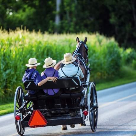 Drei junge Männer in einer Pferdekutsche, Pennsylvania