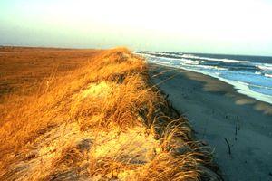 Ocracoce Island Beach