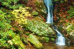 Wasserfall Pisgah National Forest in North Carolina