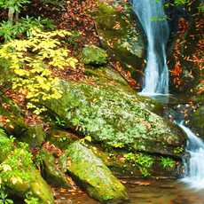 Waterfall in Pisgah National Forest
