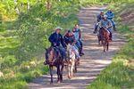 Clear Creek Ranch Ausritt in North Carolina