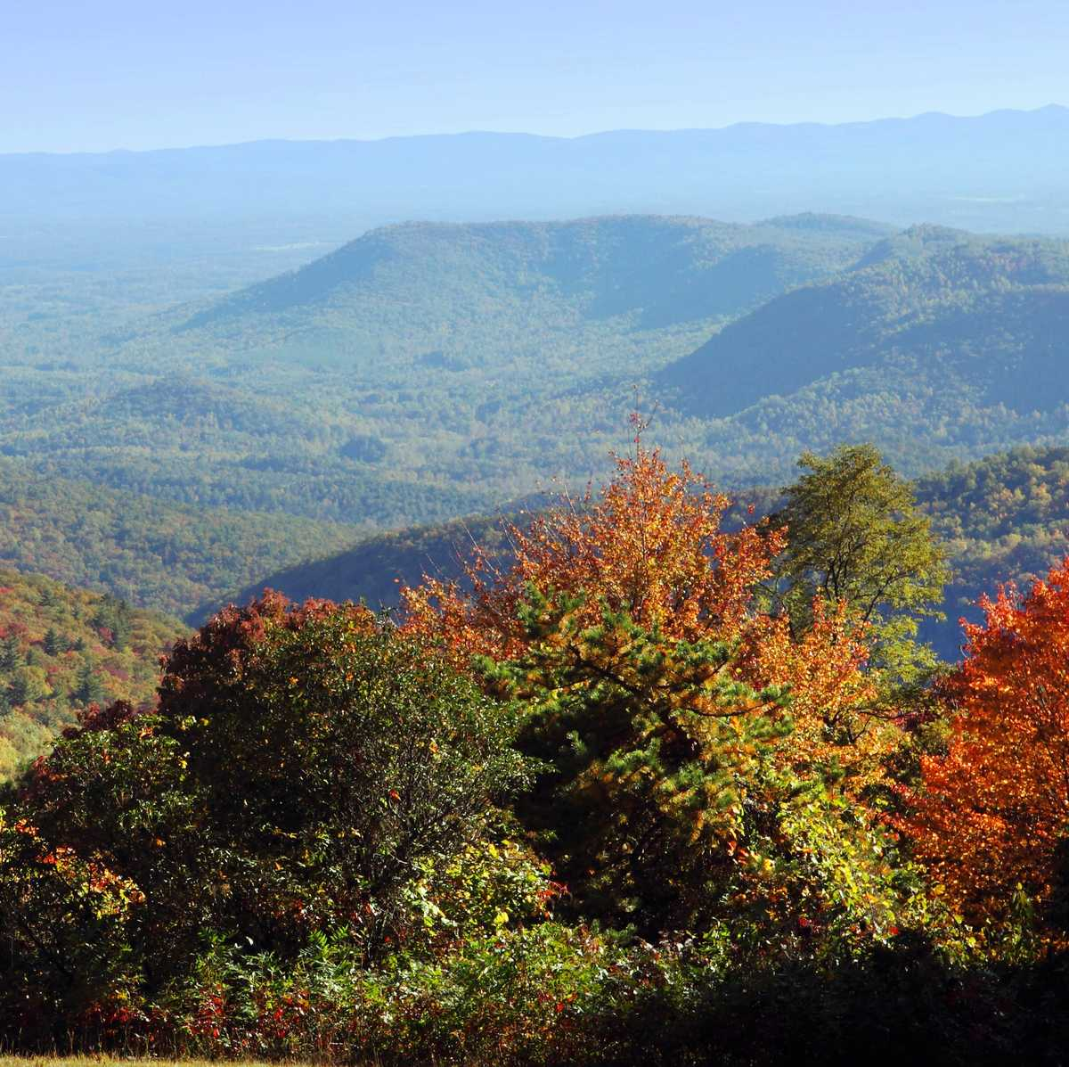 Blick ueber den Great Smoky Mountains National Park