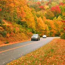 Highway 441 in den Great Smoky Mountains