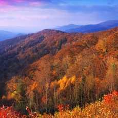 Herbst am Newfound Gap