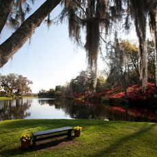 Middleton Place See