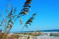 Blick auf die Küste von Myrtle Beach, South Carolina, USA