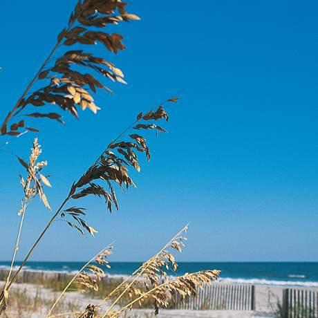 Strand in South Carolina