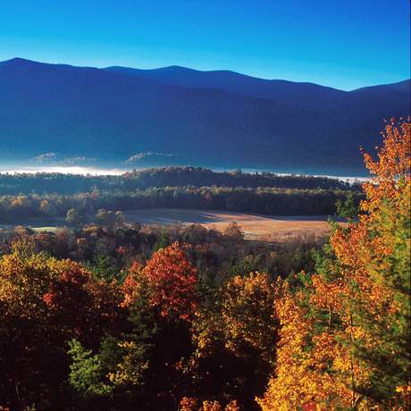 usa, deep south, suedstaaten, contentcampaign, tennessee, great smoky mountains nationalpark, np, indian summer, herbst, bŠume, berg, cades cove