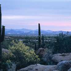Landschaft in Sciotsdale, Arizona