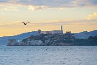 Das Gefängnis Alcatraz in in San Francisco