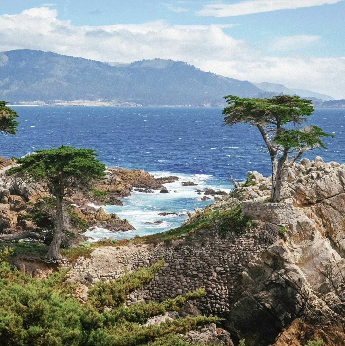 """Die """"Lone Cypress"""" am 17-Mile Drive an der Küste von Monterey"""