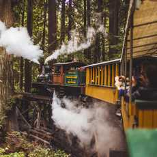 Roaring Camp and Big Trees Narrow Gauge Railroad in San José