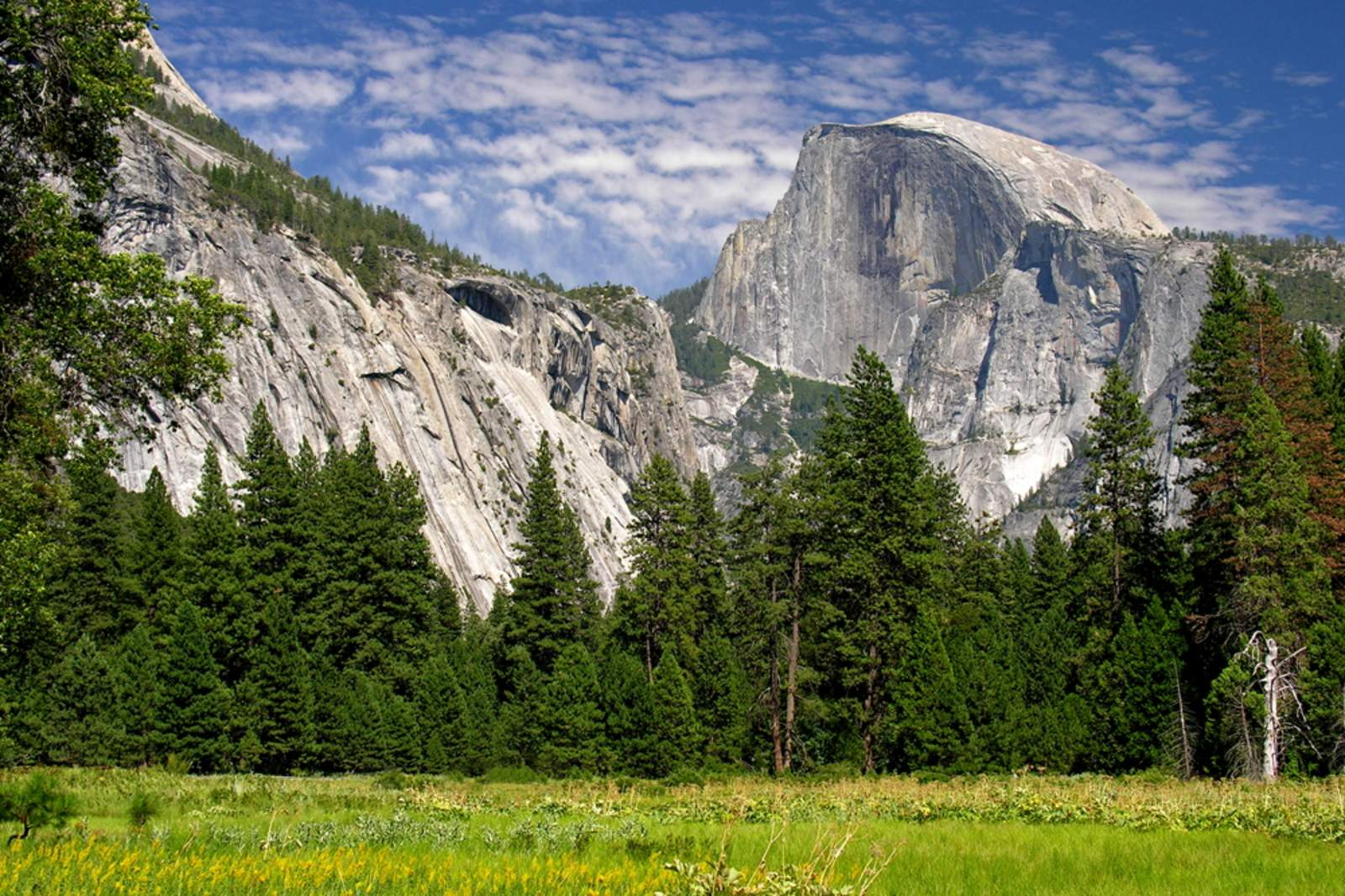 yosemite national park buddhist single men There are 1,162 square miles of yosemite national park outside the teeming valley, and enterprising visitors with stamina and time find a few untrammeled spots where the wild west becomes wild again.