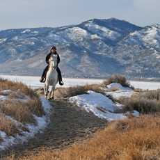 Pferdereiten im Washoe Valley