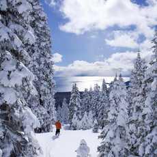Skifahren im Tahoe Ski Resort in Nevada
