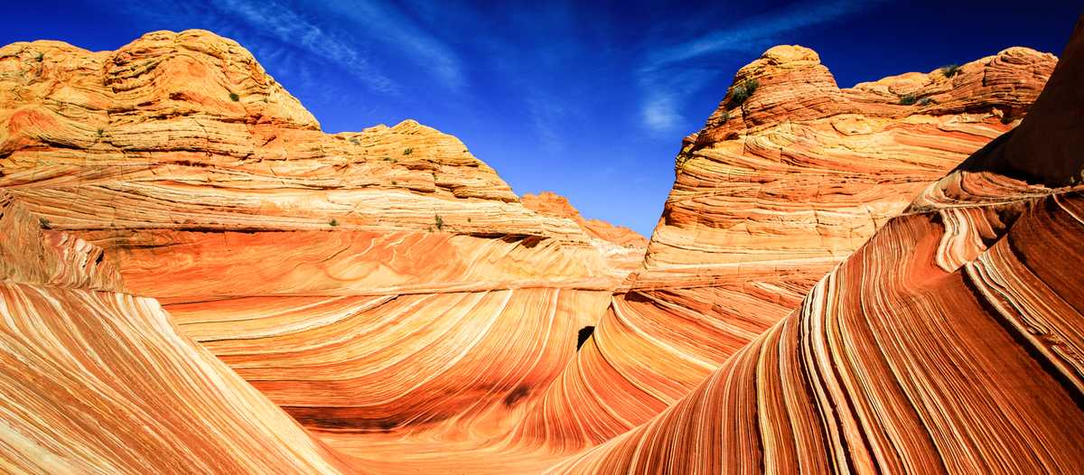 The Wave in den Coyote Buttes in Utah