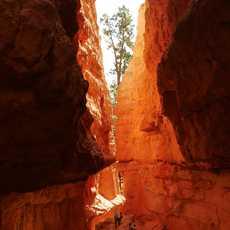 Schlucht im Bryce National Park
